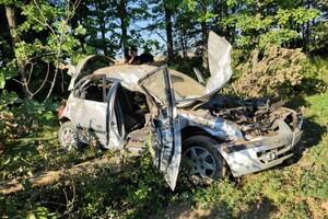 Смертельное ДТП на Запорожской трассе: среди пострадавших есть дети фото 2